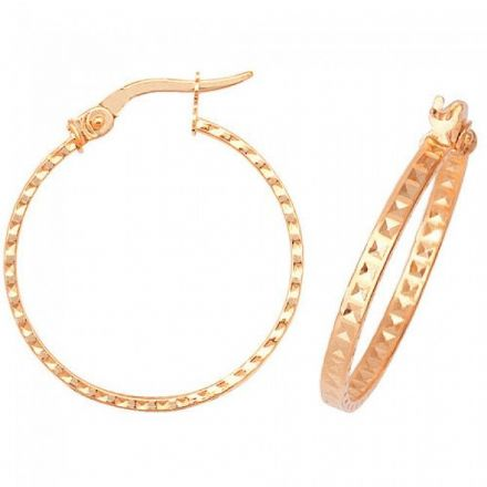 Just Gold Earrings -9Ct Dia Cut Earrings, ER653